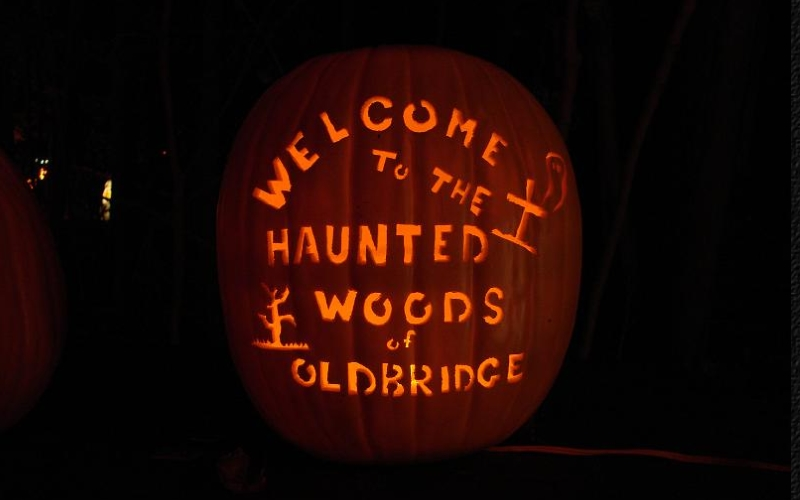 Haunted Woods of Old Bridge Halloween Attractions NJ