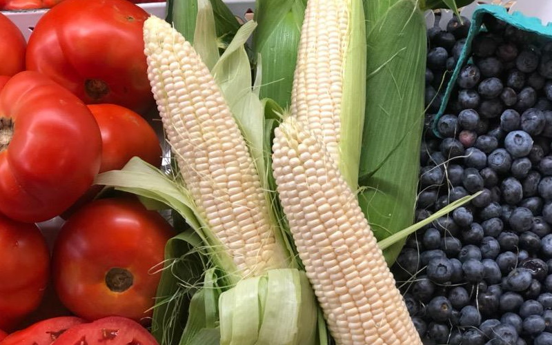 Image of apples, corn and blueberries at the farm