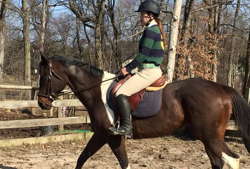 Kafka Farms NJ Watchung NJ Horseback Riding Camps in NJ