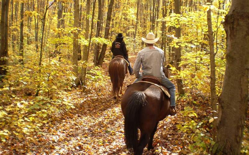 Lord Stirling Stable horseback riding facilities in Somerset County NJ