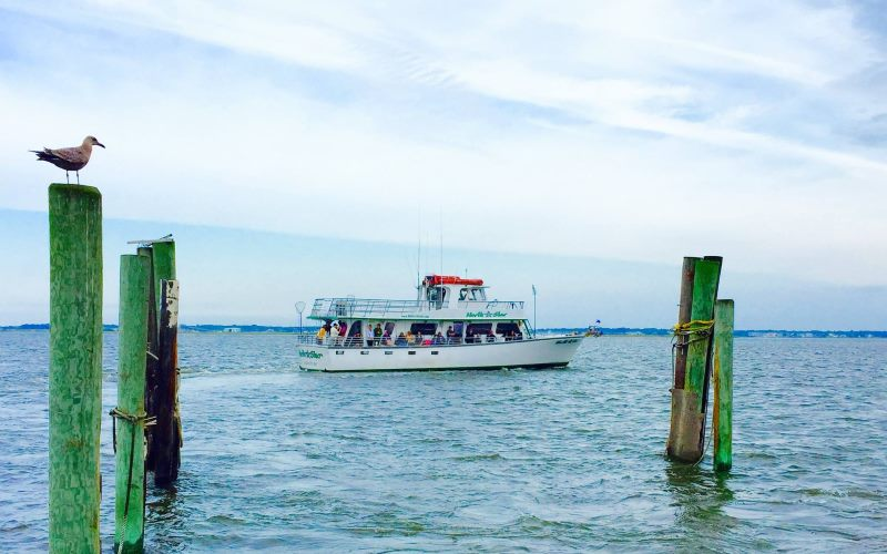 North Star Fishing and Cruises Boat Rentals in Southern New Jersey