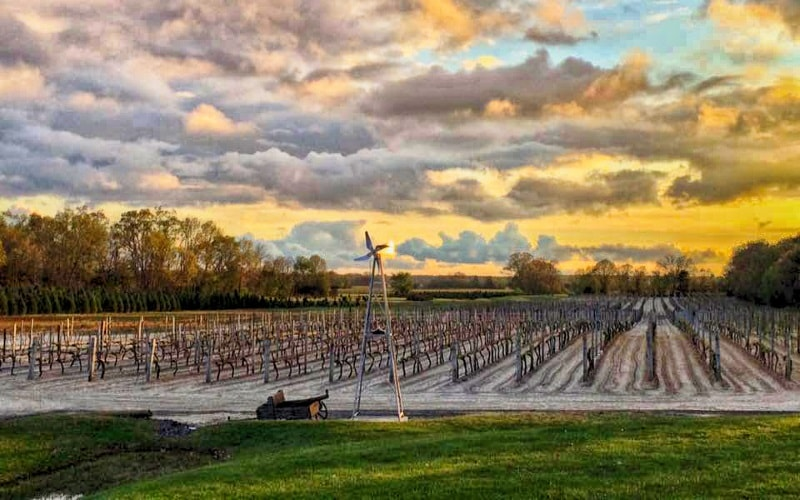 The whole process is done to ensure satisfaction in every sip at this family owned winery, Palgido's Winery in Hammonton NJ.