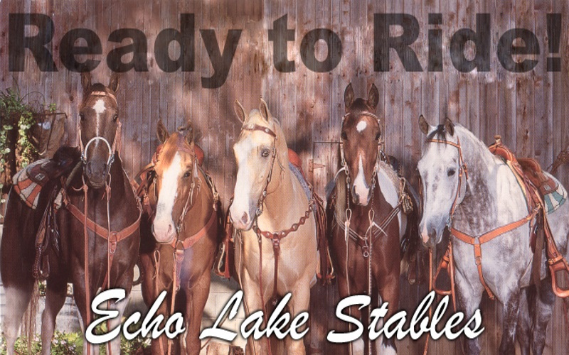 Echo Lake Stables has outdoor adventures in NJ for day or night!
