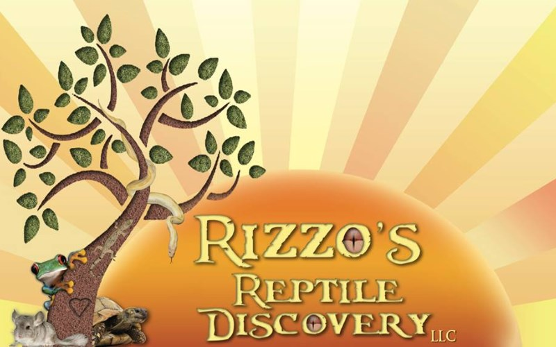 Rizzo's Wildlife Discovery Parties in New Jersey