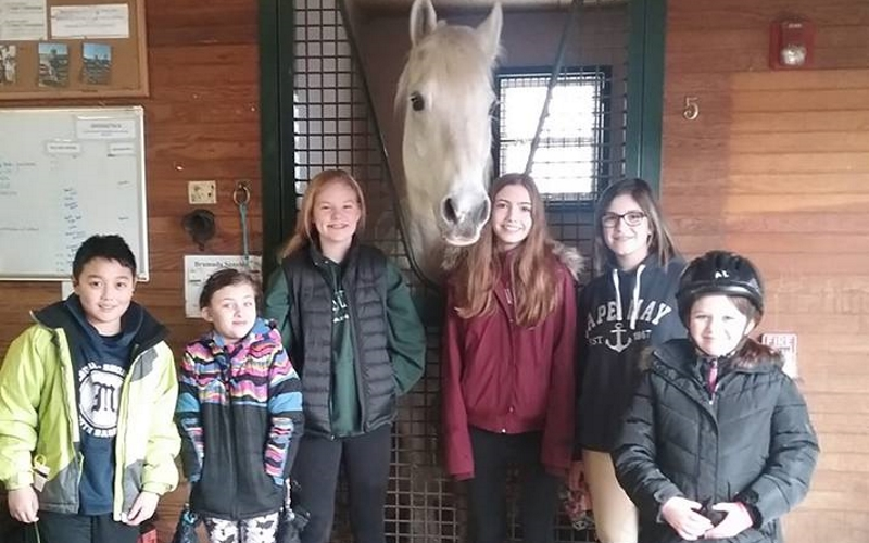 Seaton Hackney Stables Morristown NJ Pony Party Places in NJ