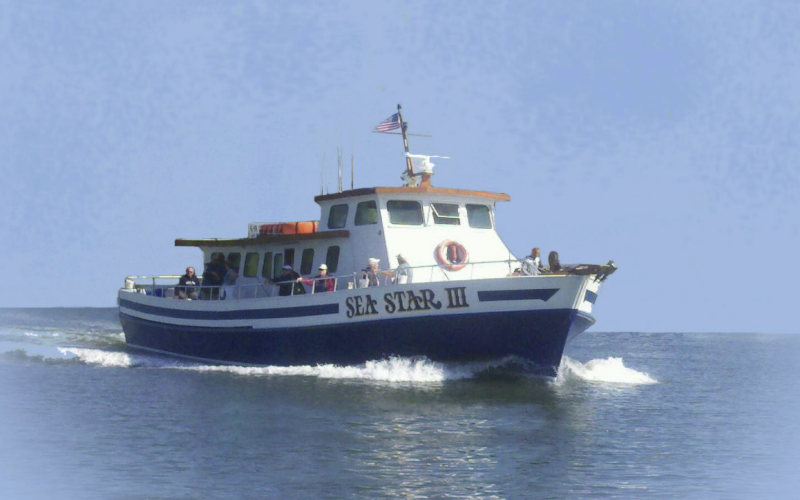 Sea Star Fishing Party Boat in Cape May NJ