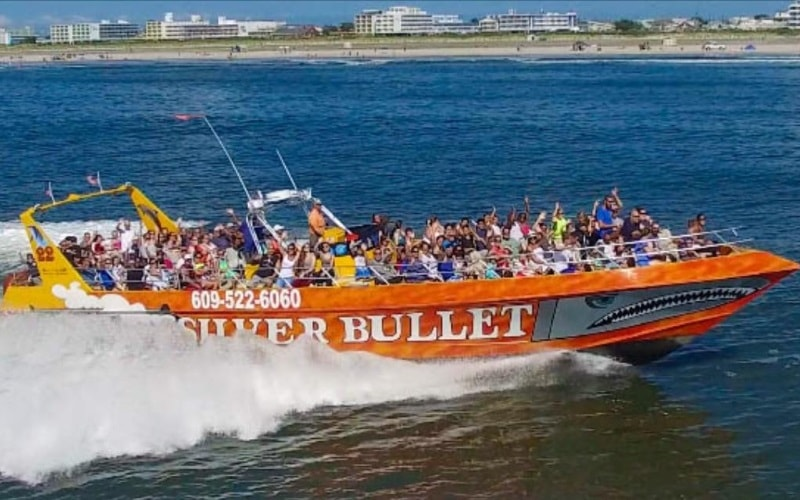 Silver Bullet Speedboat & Dolphin Watch and Tours in NJ