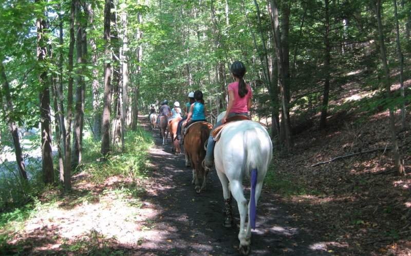 Spring Valley Equestrian Center Guided Horseback Trail RIdes in NJ