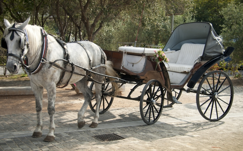 Stockton Carriage Tours Fall Getaways Central Jersey