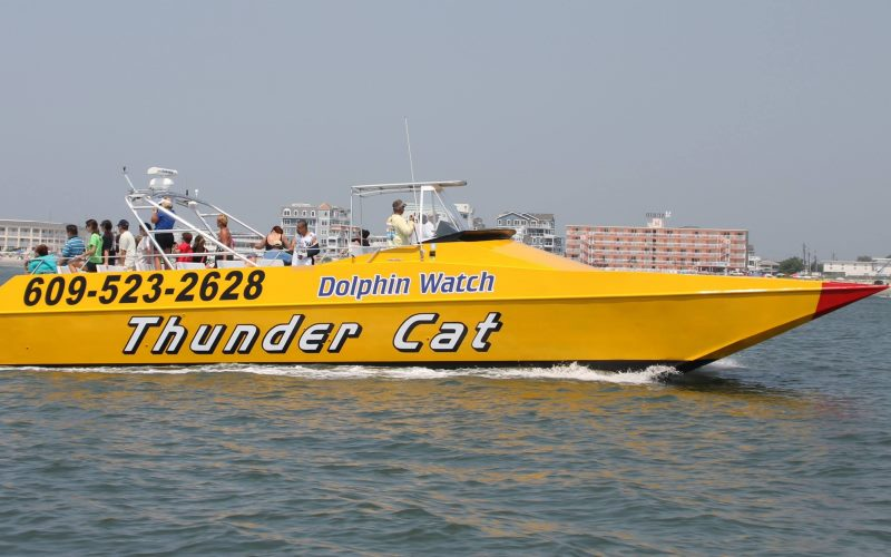 Thunder Cat speedboat adventure in Cape May County NJ