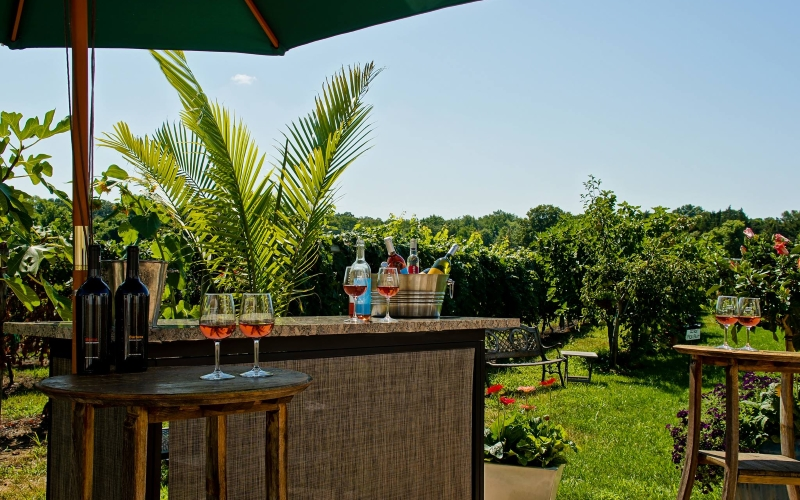 Turdo Vineyards and Winery Tours Cape May NJ