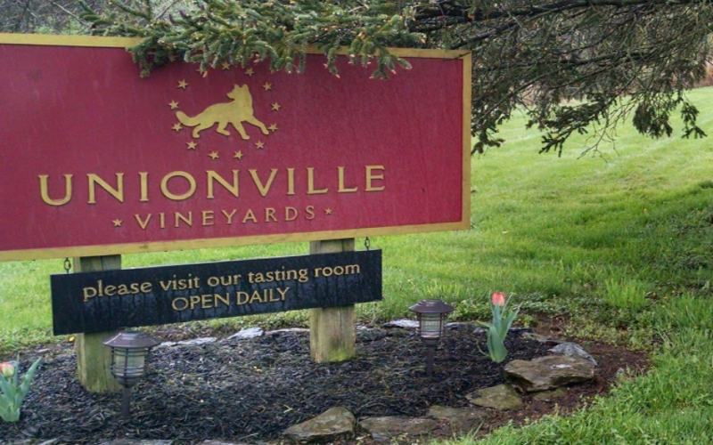 For great wine tasting and a vineyard tour in Hunterdon County, go for Unionville Vineyards.