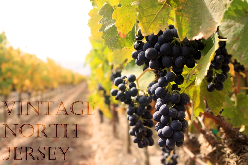 Vintage North Jersey Wine Trails Tastings NJ