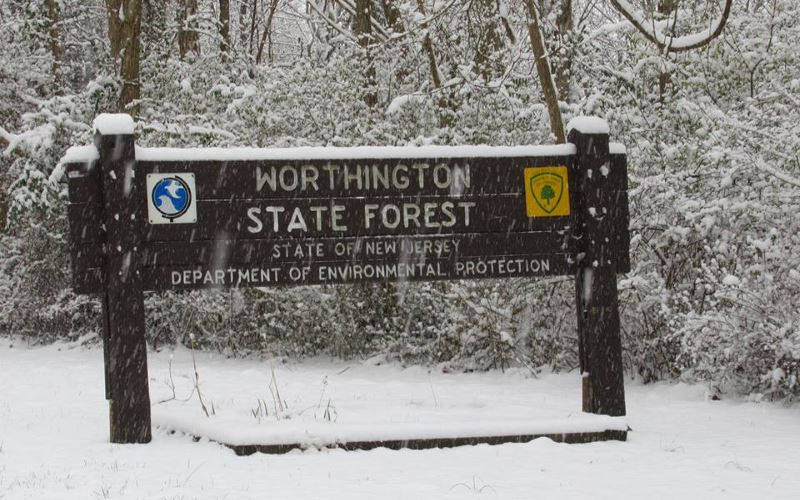 Worthington State Forest NJ
